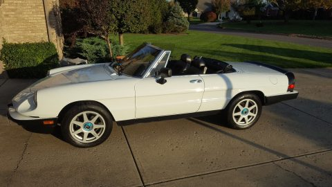 1986 Alfa Romeo Spider black for sale